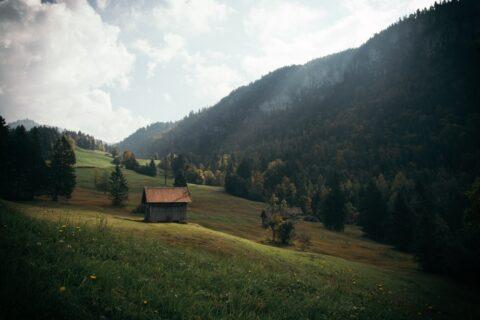 ZRCL Better Life, nützliche Tipps für ein nachhaltiges Leben